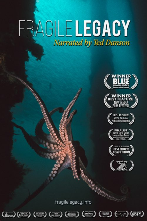 Filmmaker Presents New Marine Documentary