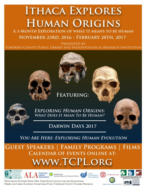 new-poster-8x11-human-origins-graphics-standard